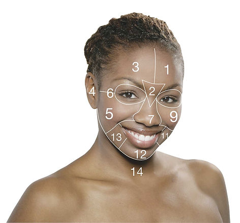 facemapping2.jpg