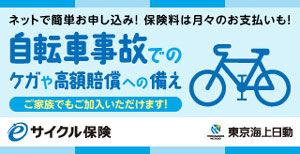 e-cycle_A_300.jpg