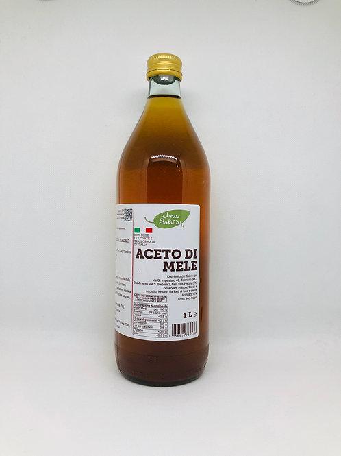 Aceto di mele 1 L