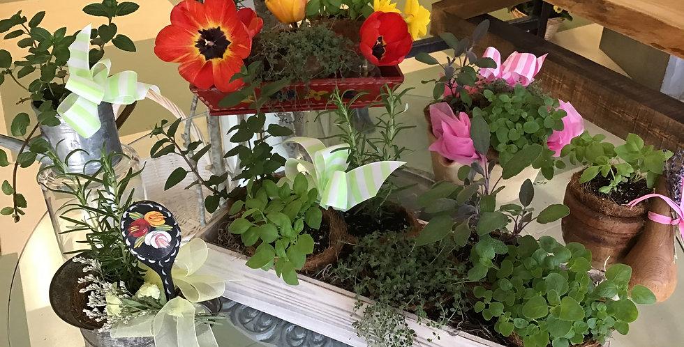 A Gardeners Dream