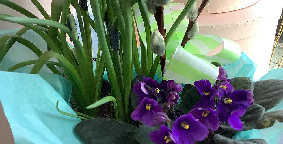 Spring Hatbox Planter