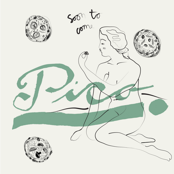 Visual Identity For Pico Pizza