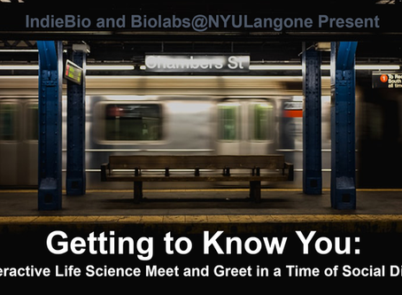 Biolabs@NYULangone Welcomes IndieBio to NYC!