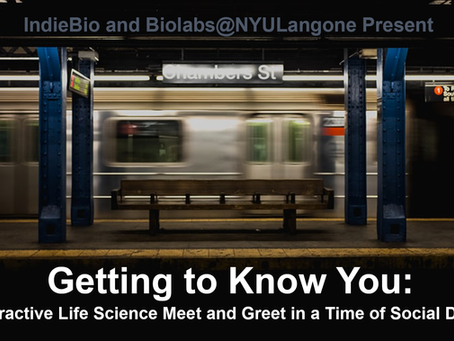 Biolabs@NYULangone Welcomes IndieBio to NYC!
