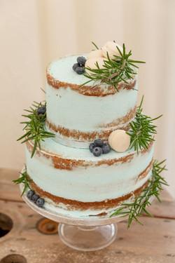 Pale Blue Semi Naked Cake