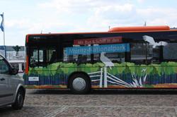Mit Bus und Schiff durch den Nationalpark
