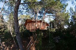 Tree houses in Languedoc and Provence with Belle Tourisme