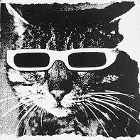 radio_friendly_cat_glasses.jpg