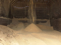 Sawdust_640.jpg