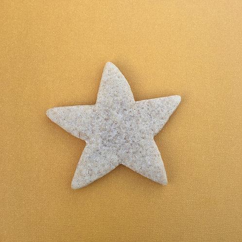 "Custom 3"" Star or Starfish"