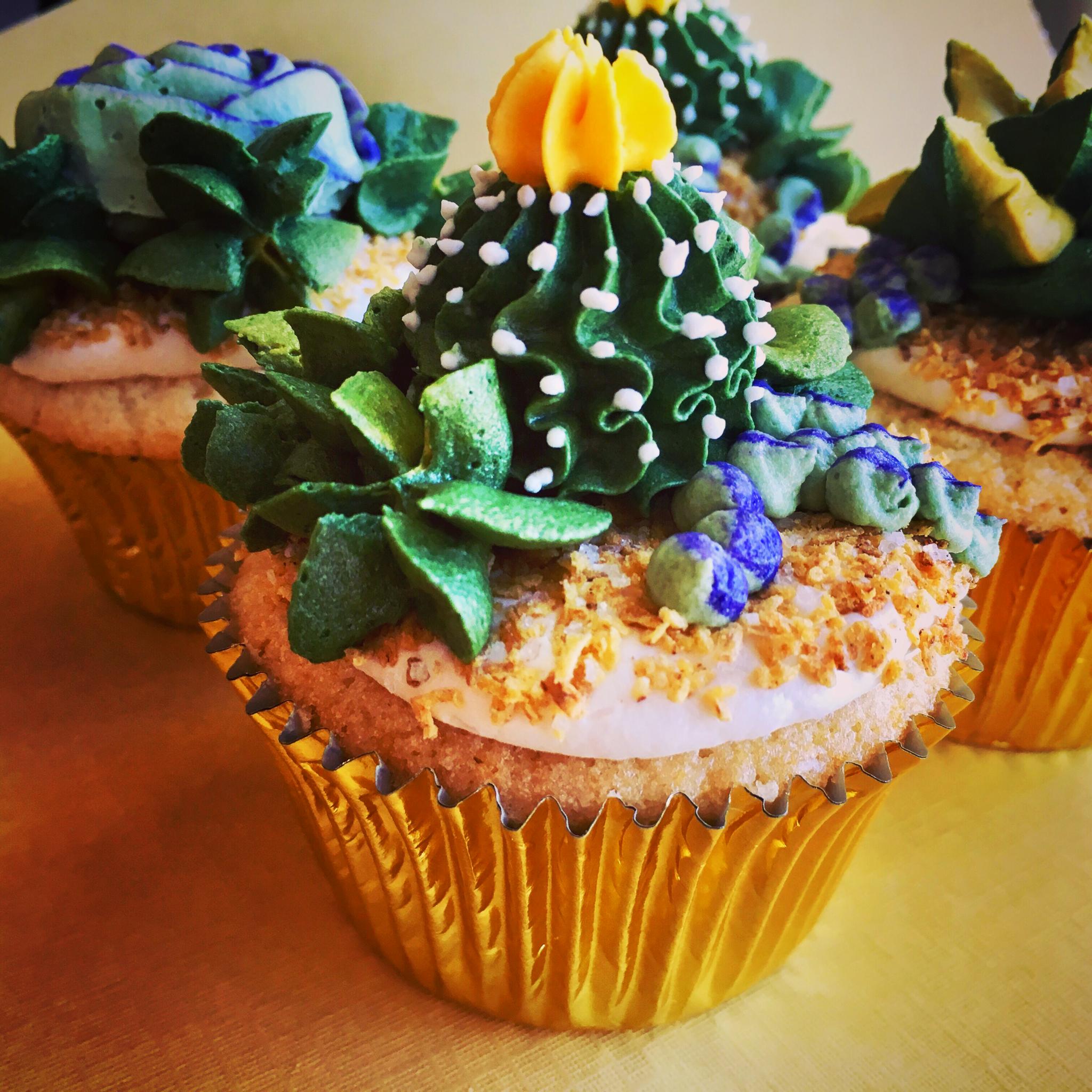 Succulent Cupcake