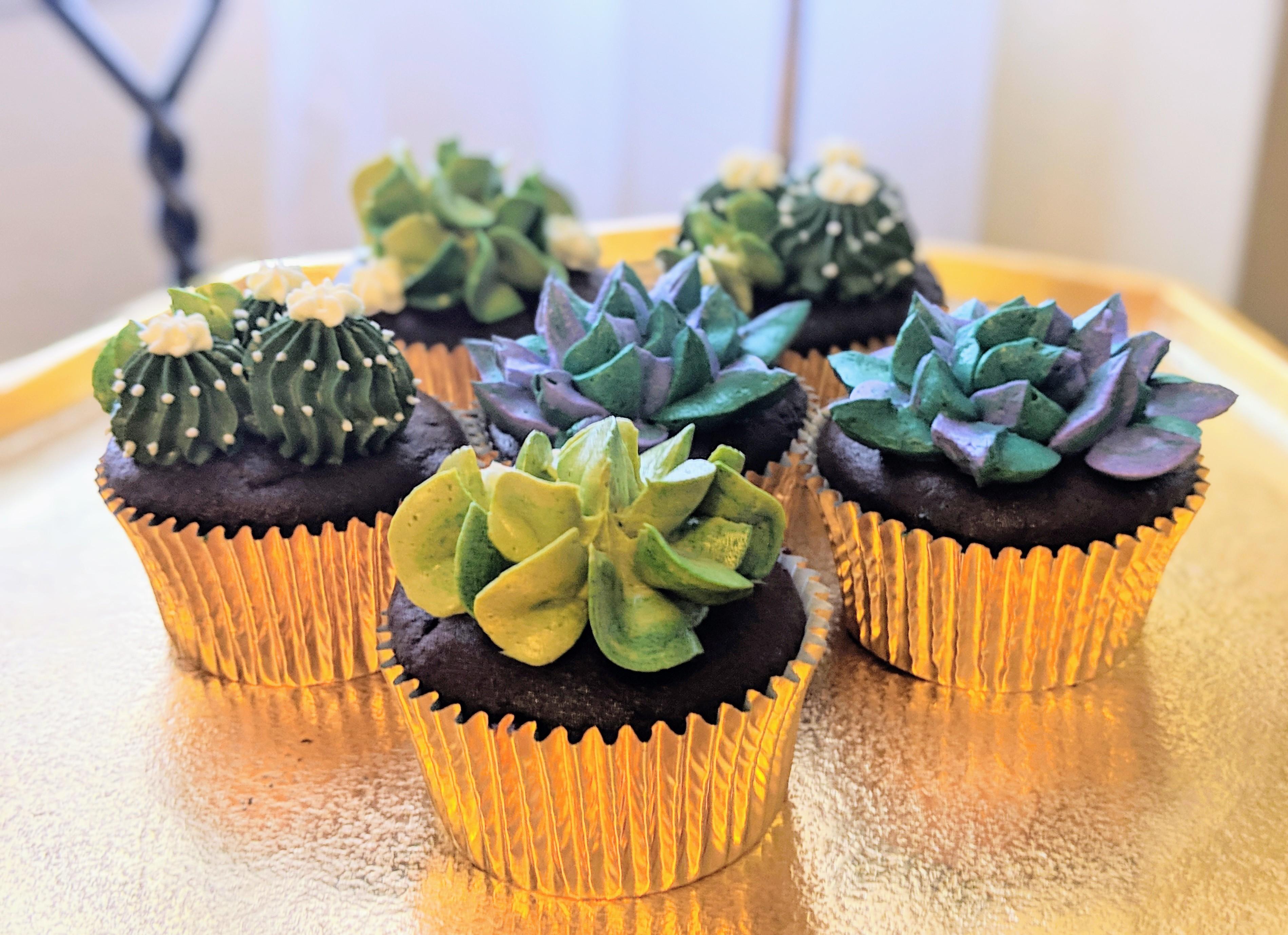 Succulent Cupckes