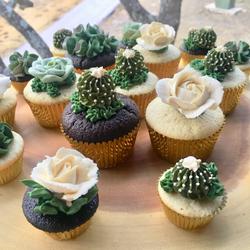 Succulent & Floral Cupcakes