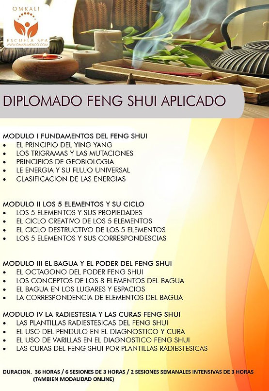 DIPLO FENG SHUI PIC.jpg