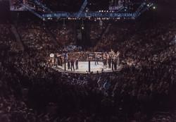 UFC Fight / Las Vegas