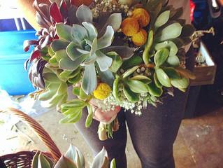 Bridal Succulents - Sneak Peek!