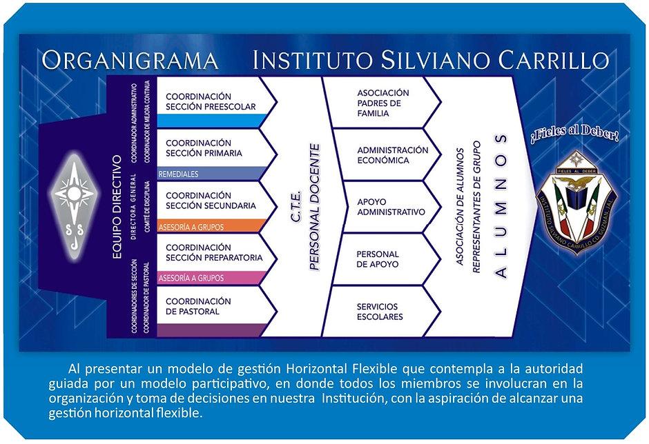 organigrama 19.jpg