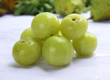 Amla (Indian Gooseberry) according to various Herbal Sciences.