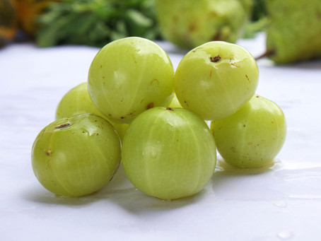 Amla (Indian Gooseberry) according to various Herbal Sciences.