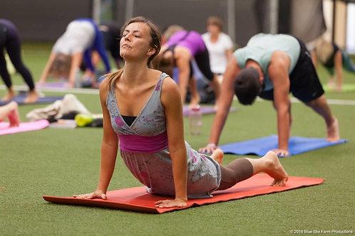 Drop in ZOOM Yoga Class
