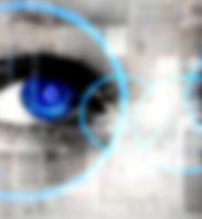 identidade visual studijo coruja
