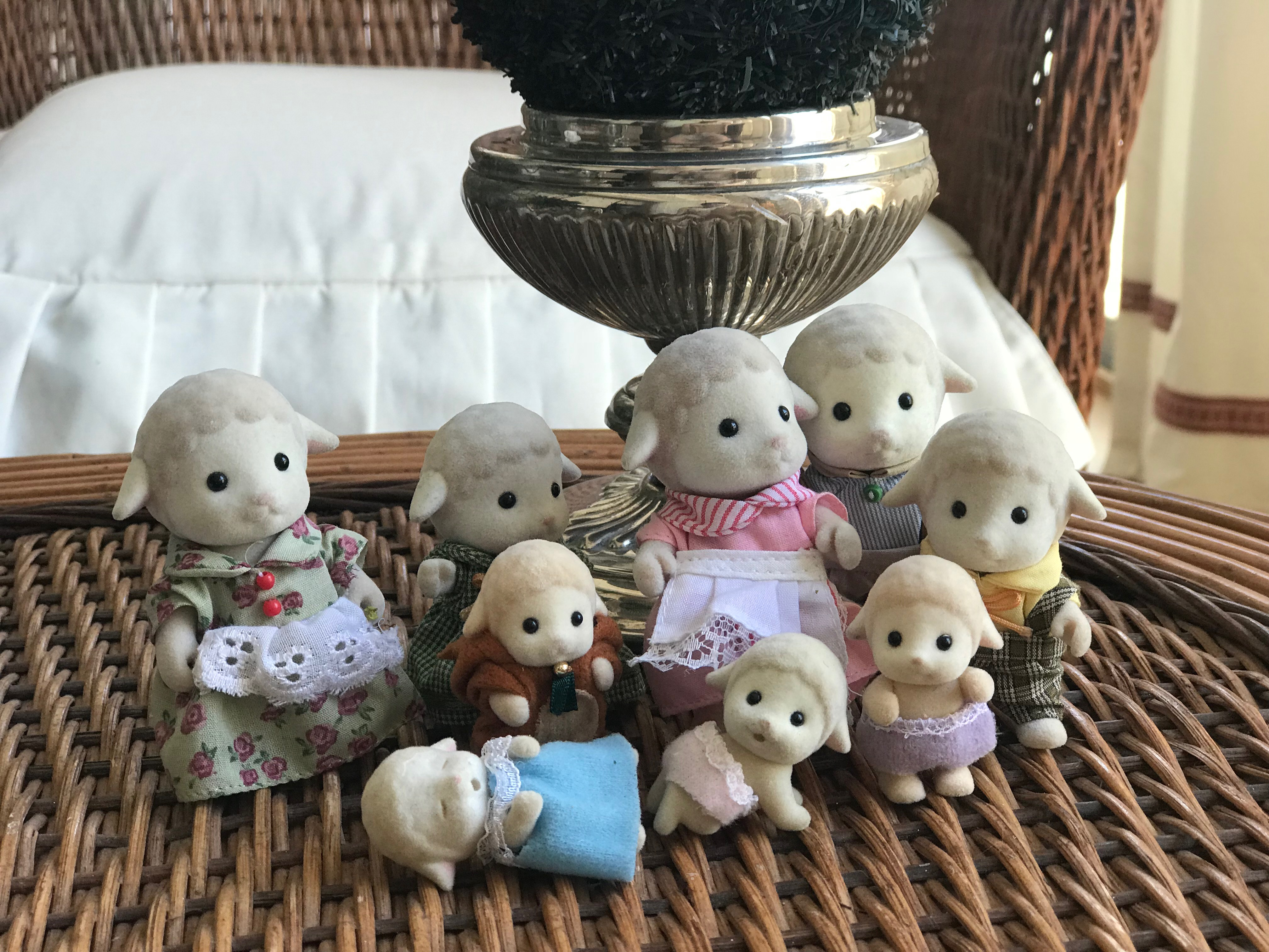Dale Sheep Family