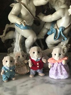 Pettyfur Guenia Pig Family