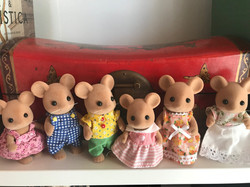 Brown Mouse Family