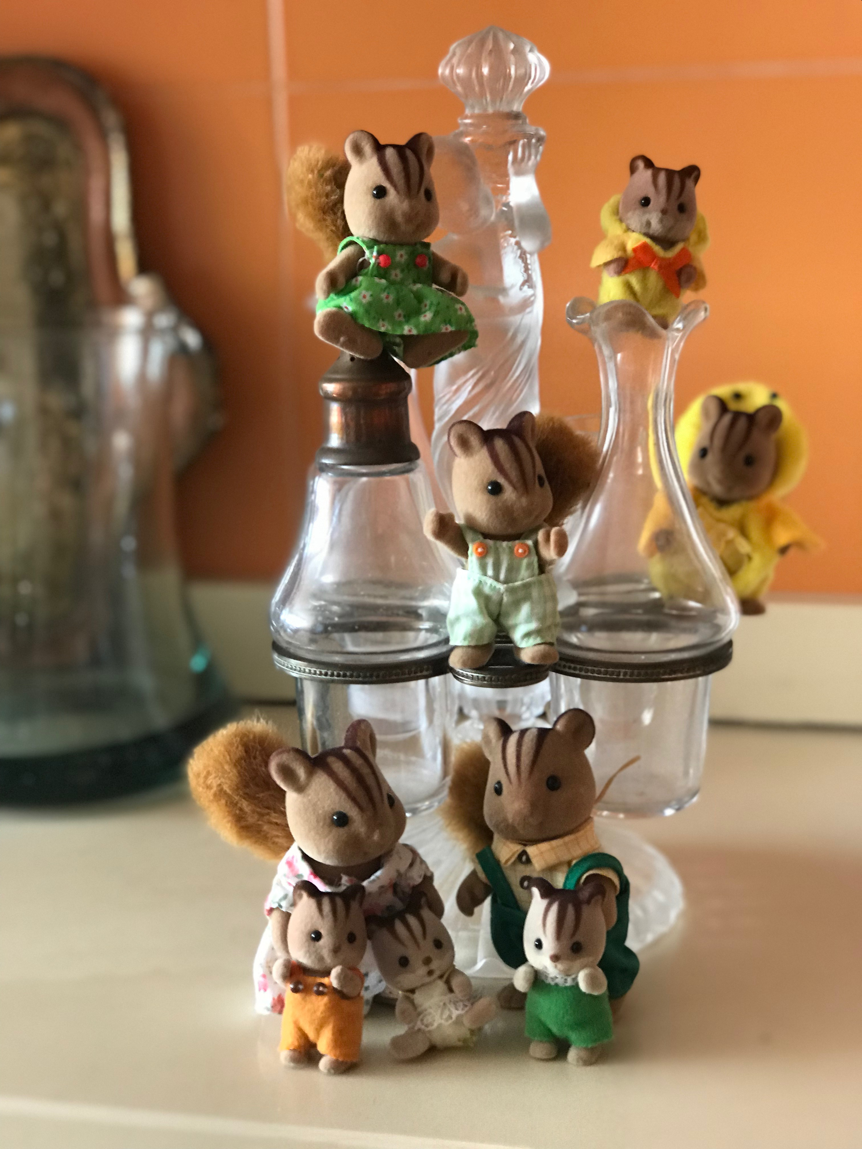 Walnut Squirrels