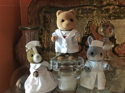 Our Sylvanian clinic staff