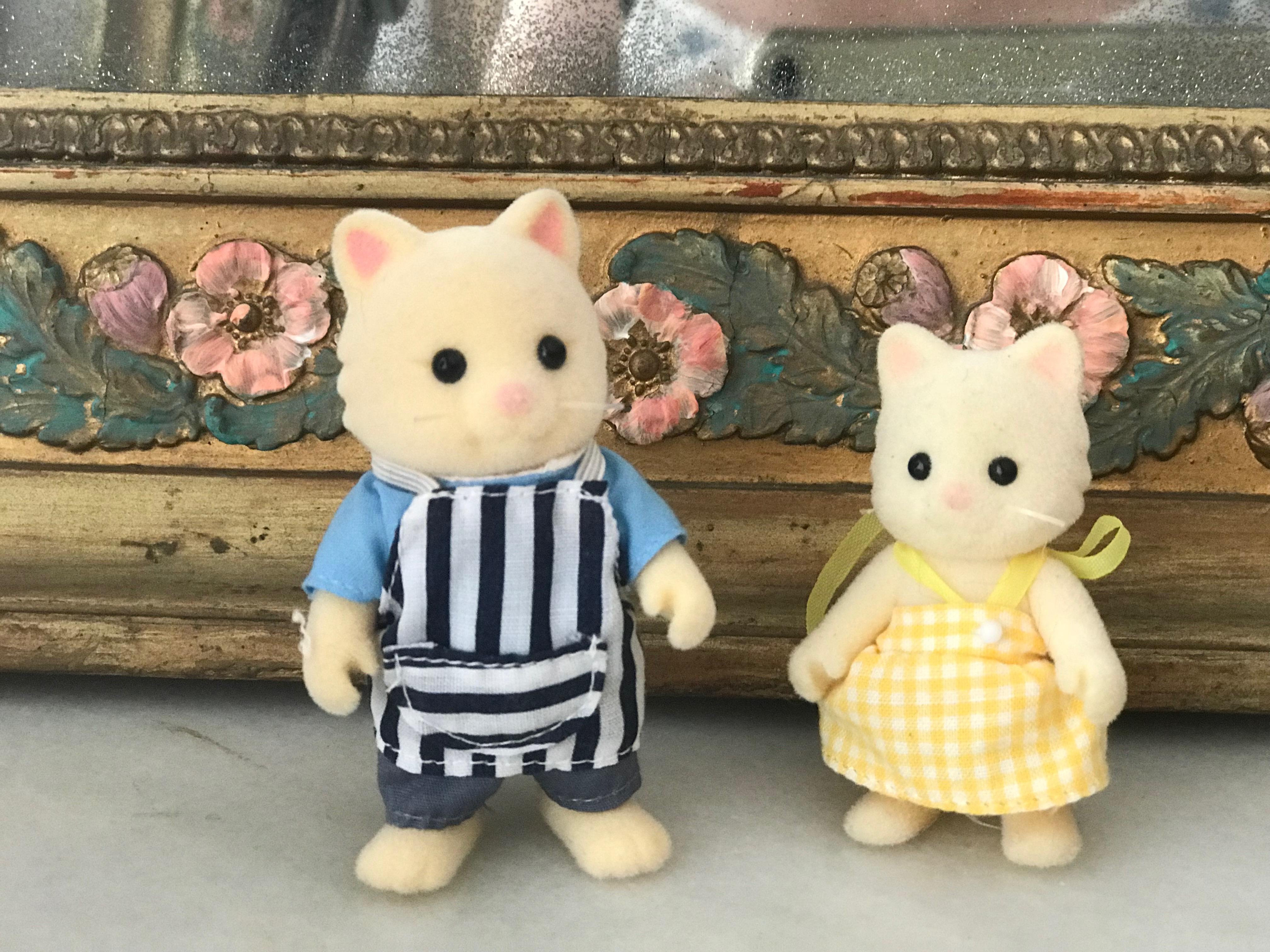 Chantilly Cat Family