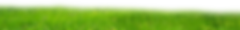 png_grass_by_paradise234-d5cd3md.png
