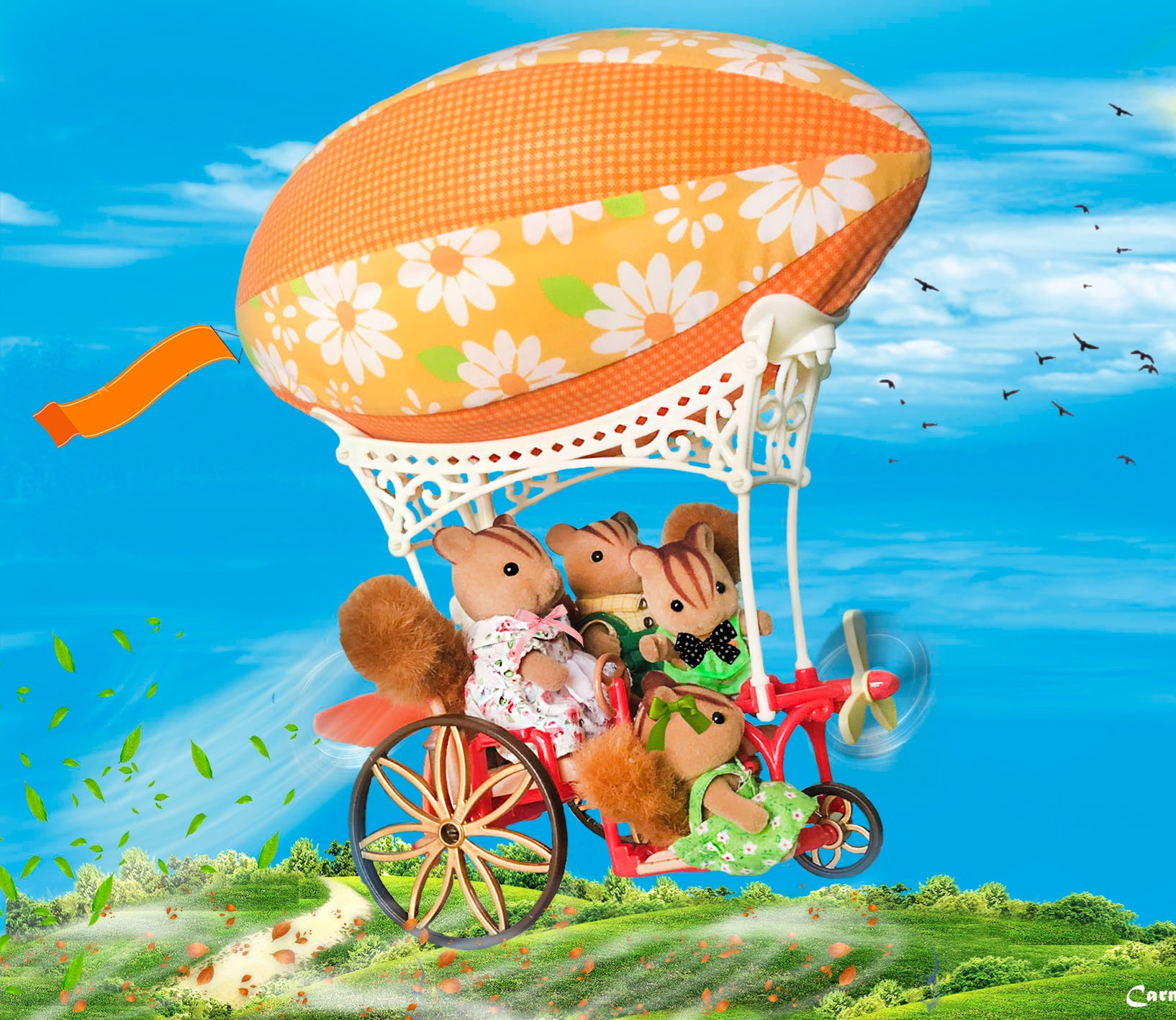 A ride in a hot air balloon