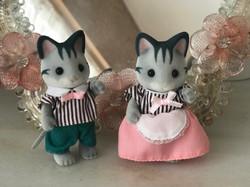 Grey cat Family