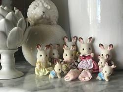 Chocolate Rabbits family