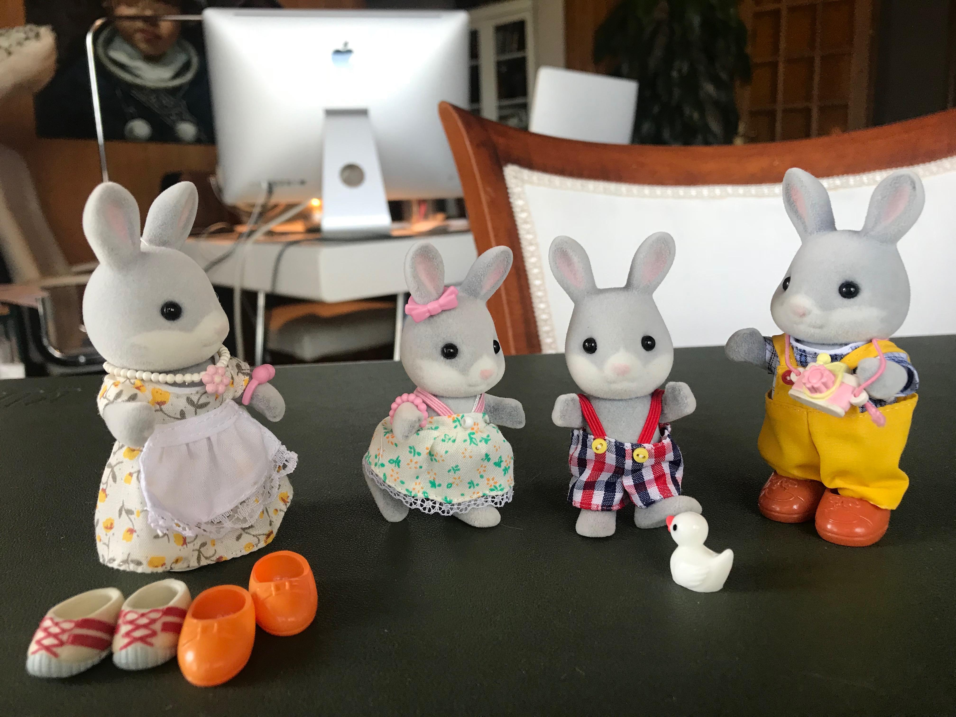 The cotton tail rabbit family