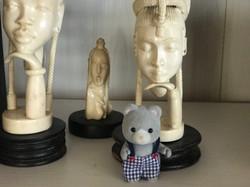 This grey beautiful bear I love it