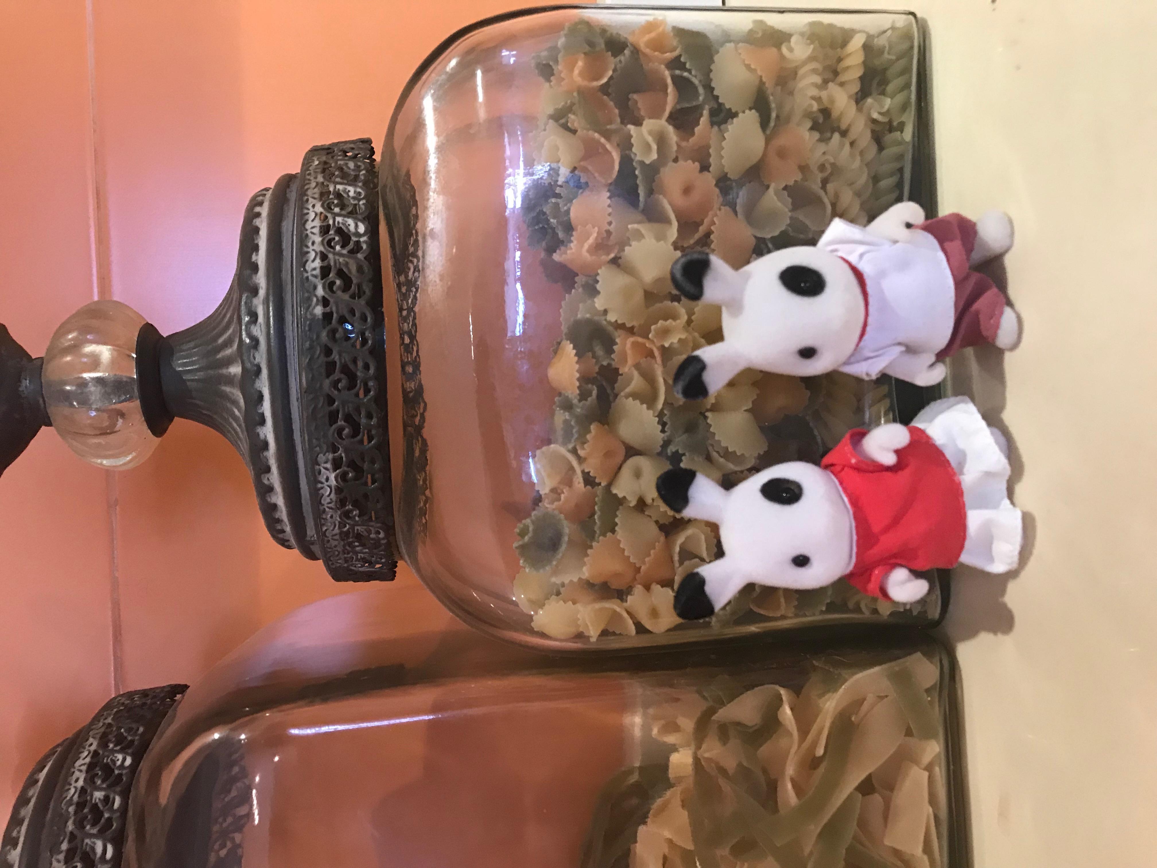 Spotted Blackberry Rabbit Family