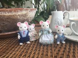 Hawthorn White Mice