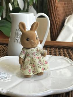 Dappledawn Fawn Rabbits
