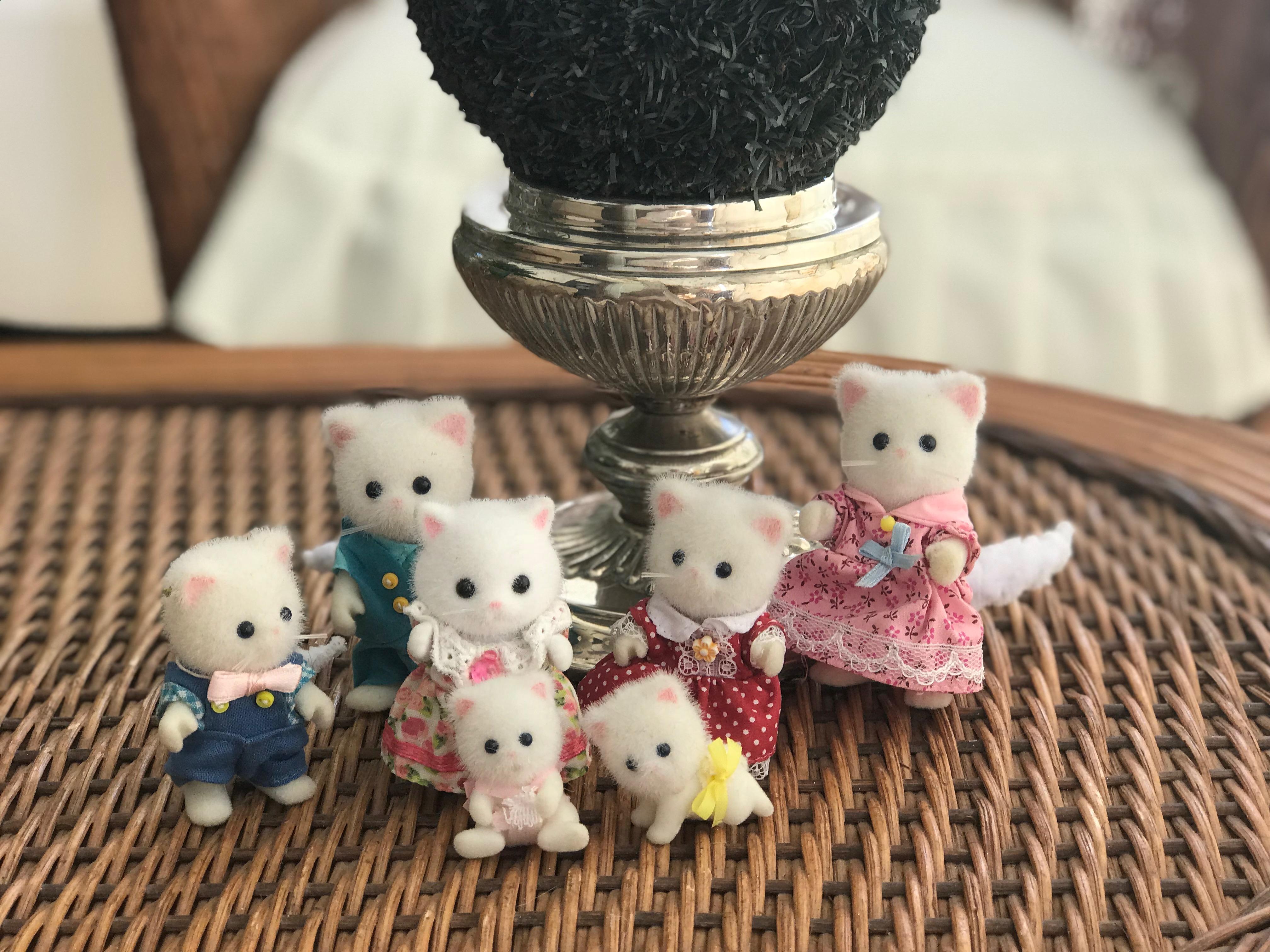 Persian Cats Family