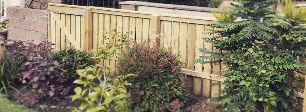 Slat garden fencing and small gate