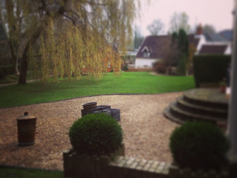 Lawns and leaf clearing