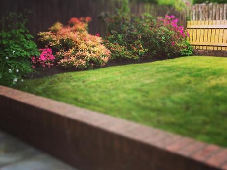 Garden Maintenance Thornhill Cwmbran