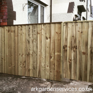 Feather edge fence and gate