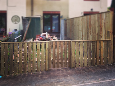 Small slat fence and gate