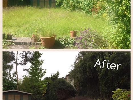 Garden clearing Bassaleg Newport