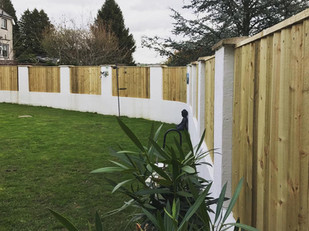 Feather edge fencing panels with 4x1 top frame