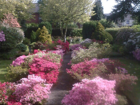 Beautiful Garden Cwmbran