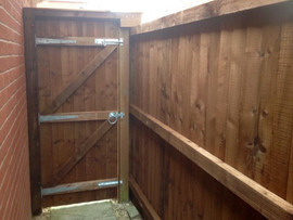 Feather edge gate & fencing